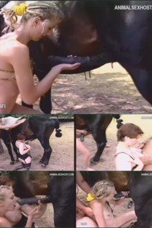 gmv2394_-_international_animal_06_-_big_horse_dicks_girls_2_sv