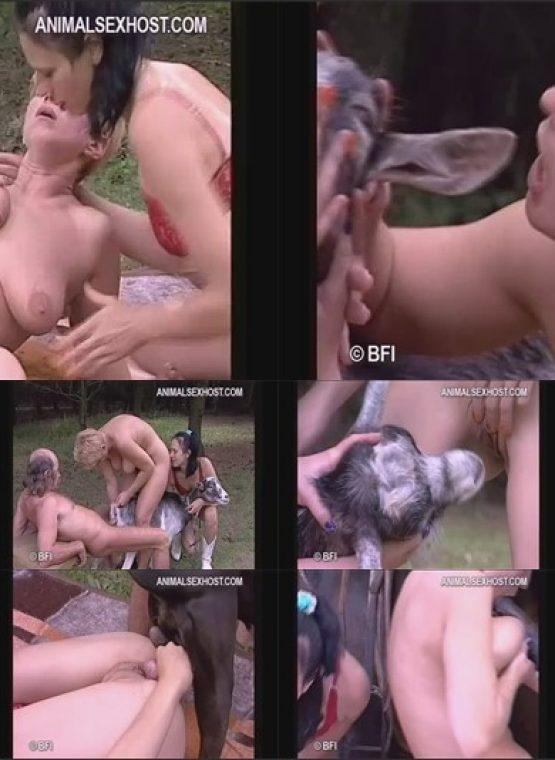 goat farm swingers dvd cover