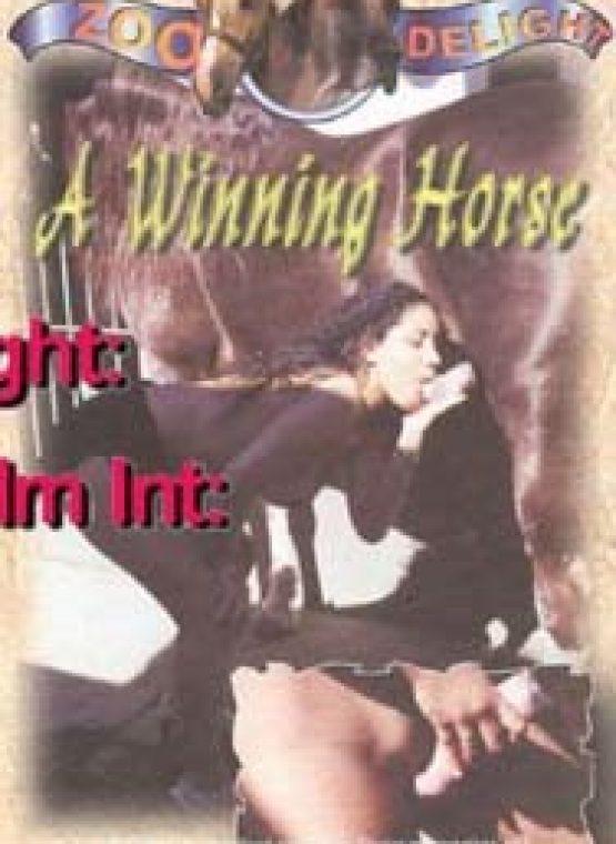 A Winning Horse Clip front